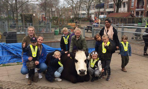 Woensdagmiddag: Kinderboerderij 't Waaygat