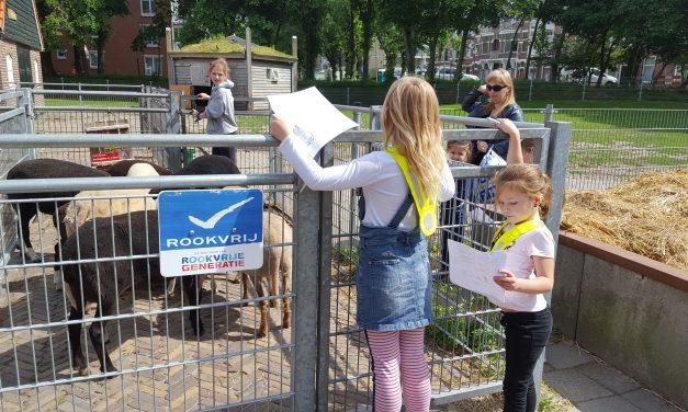 Time to Move: Speurtocht bij de kinderboerderij